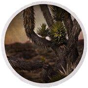 Joshua Tree In Mojave National Preserve Round Beach Towel
