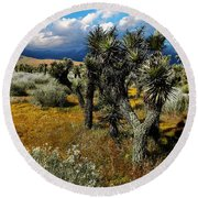 Joshuas And Sage Round Beach Towel