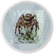 Jumper Spider 4 Round Beach Towel