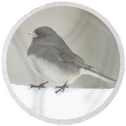 Junco 2 Round Beach Towel