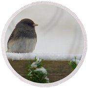 Junco On The Railing Round Beach Towel