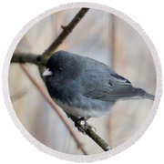 Junco Round Beach Towel