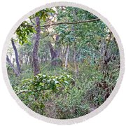 Jungle Forest In Chitwan Np-nepal Round Beach Towel