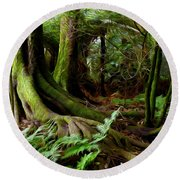 Jungle Trunks2 Round Beach Towel by Les Cunliffe