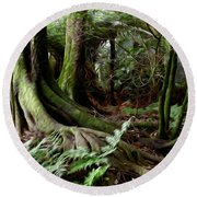 Jungle Trunks3 Round Beach Towel by Les Cunliffe