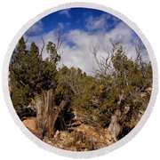Juniper Trees At The Ghost Ranch Color Round Beach Towel