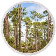 Ancient Looking Florida Forest At Aubudon Corkscrew Swamp Sanctuary Round Beach Towel