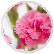 Just Carnations Round Beach Towel
