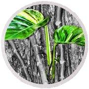 Just Green 2 By Diana Sainz Round Beach Towel