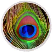 Just One Tail Feather Round Beach Towel