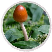 Just One Toadstool Round Beach Towel