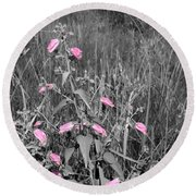 Just Pink Round Beach Towel