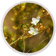 Just Two Little White Flowers Round Beach Towel