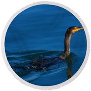 Juvenile Cormorant Swim Round Beach Towel