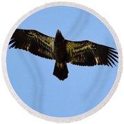 Juvenile Flight 8229 Round Beach Towel