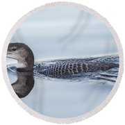 Juvenile Loon Reflection Round Beach Towel