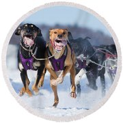 K9 Athletes Round Beach Towel by Mircea Costina Photography