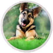 K9 Cute Round Beach Towel