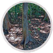 Kapok Trees Along The Trail In Manual Antonio National Preserve-costa Rica Round Beach Towel