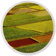 Kauai Taro Fields Round Beach Towel
