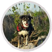 Kayaker's Best Friend Round Beach Towel by James Peterson
