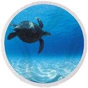 Keiki Turtle Round Beach Towel