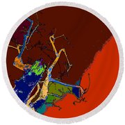 Kenneth's Nature - Dying To Live - Series - 09 Round Beach Towel