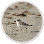 Kentish Plover Round Beach Towel