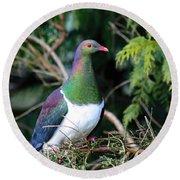 Kerehu - New Zealand Wood Pigeon Round Beach Towel