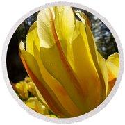 Keukenhof Yellow Tulips Round Beach Towel