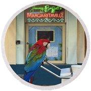 Key West - Parrot Taking A Break At Margaritaville Round Beach Towel