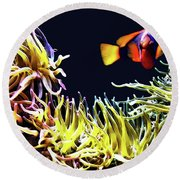 Key West Fish Round Beach Towel