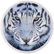 Khan The White Bengal Tiger Round Beach Towel