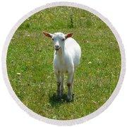 Kid Goat Round Beach Towel