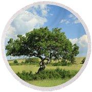 Kigelia Pinnata Tree Round Beach Towel