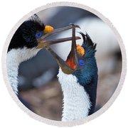 King Cormorants Round Beach Towel