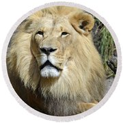 King Of Beasts Round Beach Towel