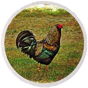 King Of The Hill - Winery Rooster Round Beach Towel