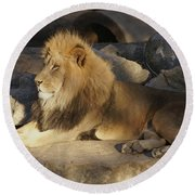 King Of The Rock Round Beach Towel