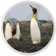 King Penguins With Chick And Egg Round Beach Towel