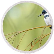 Kingfisher On A Willow Round Beach Towel