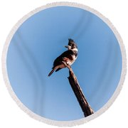 Kingfisher On Dead Tree Round Beach Towel