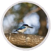Kingfisher-top-end Australia Round Beach Towel