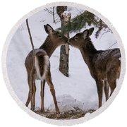 Kissing Deer Round Beach Towel