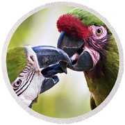 Kissing Macaws Round Beach Towel