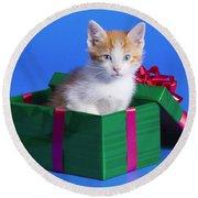 Kitten In Gift Box Round Beach Towel