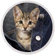 Kitten In Jean Jacket Round Beach Towel