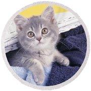 Kitten In Laundry Round Beach Towel