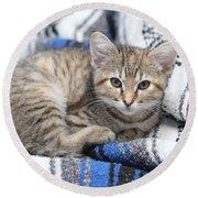 Kitten In The Blanket Round Beach Towel