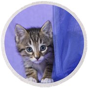 Kitten With A Curtain Round Beach Towel
